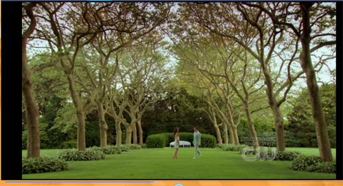 Look at that setting. The trees. The people in the middle. The colors. I could just sit on the grass and read a book.