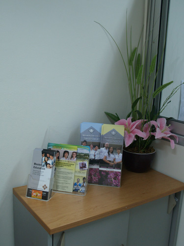 Brochures and fake orchid at the 'lounge' area.
